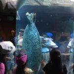 北海道・旭山動物園に行く前に知っておきたい大切なこと
