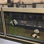 殺伐としたはずの上野駅でハートウォーミングな○○